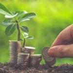 Как начать быстро и выгодно инвестировать деньги