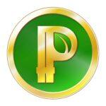 Что такое Peercoin?